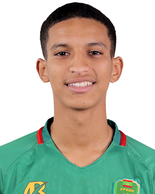 Mohamed Lemine Hawbott